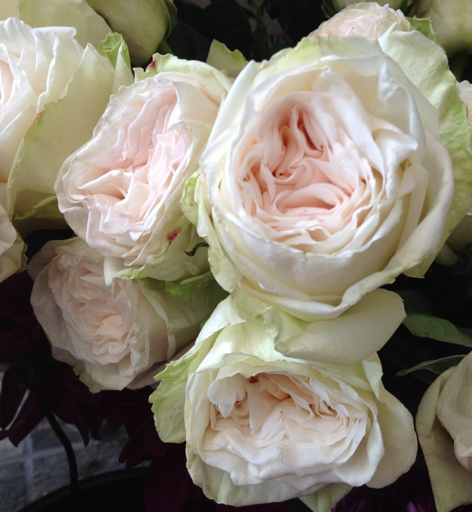 peony alternatives for your wedding white ohara garden roses