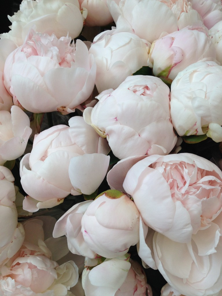 Peony alternatives for your wedding peony alternatives for your wedding white peonies mightylinksfo