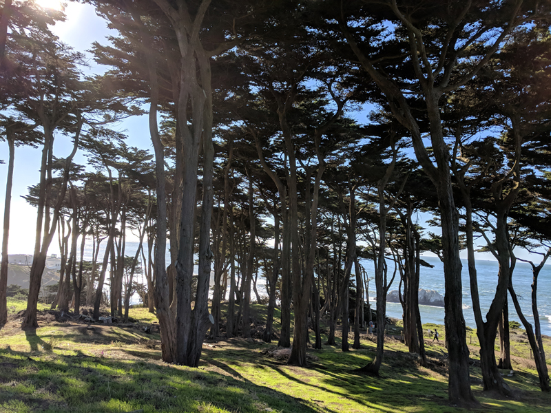 San Francisco urban getaway ideas - Lands End