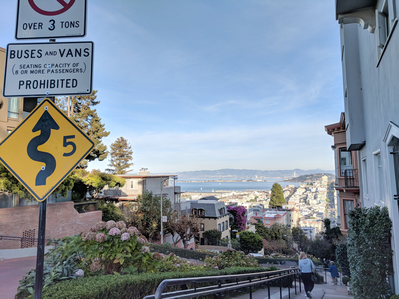 San Francisco urban getaway ideas - Take in the windy roads and views