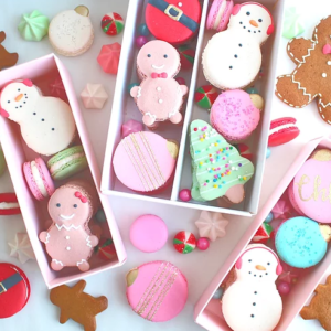 Holiday Macaron Set