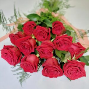 Dozen Premium Red Roses for Valentine's Day Toronto Delivery